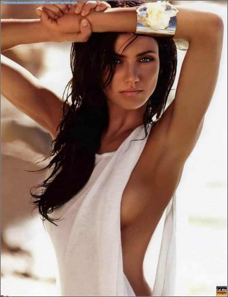 Cameron Diaz long black hair